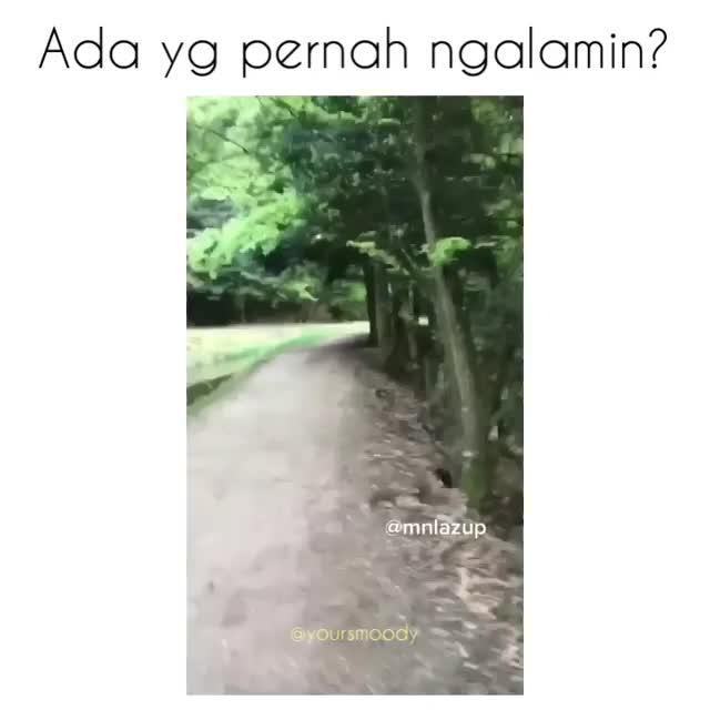 Watch and share ..n GIFs by Akane《》nekomi on Gfycat