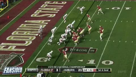 Watch florida state GIF on Gfycat. Discover more related GIFs on Gfycat