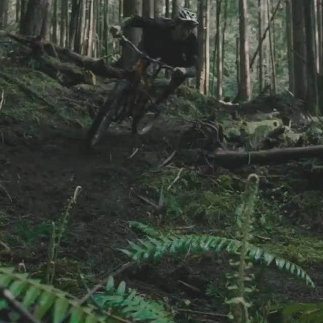 Watch TOPO Films Motion GIF by Wonderful Machine (@wonderfulmachine) on Gfycat. Discover more Canada, Motion, Squamish, Topo Films, Wonderful Machine GIFs on Gfycat