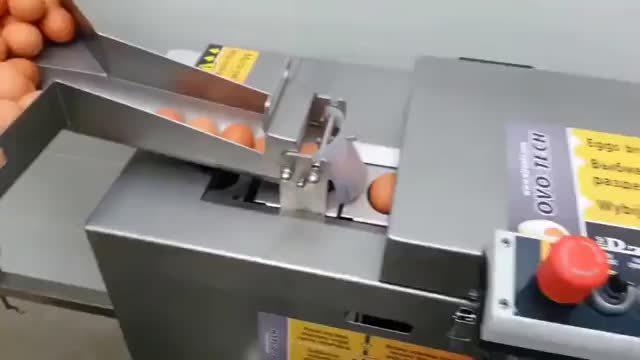 food, Industrial Egg Separator GIFs
