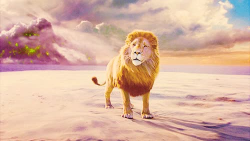 Watch Aslan, the lion of Narnia  | narnia and aslan GIF on Gfycat. Discover more related GIFs on Gfycat