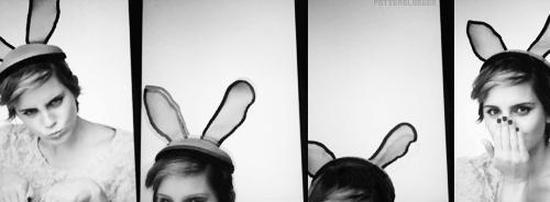 celebs, emma watson bunny ears GIFs