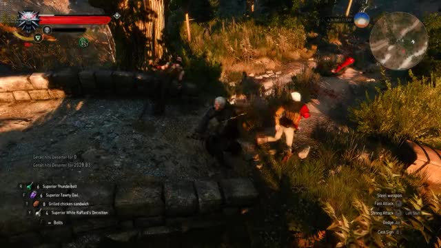 Watch and share Witcher GIFs on Gfycat