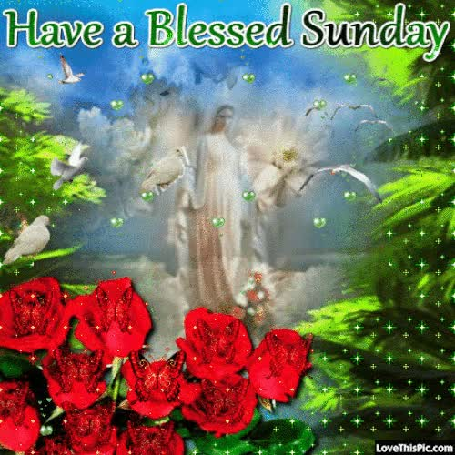 Watch and share Have A Blessed Sunday Gif Quote GIFs on Gfycat