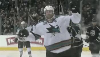 Watch 14. San Jose Sharks GIF on Gfycat. Discover more related GIFs on Gfycat
