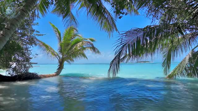 Watch and share Tropical Island GIFs and Ambience Sound GIFs on Gfycat