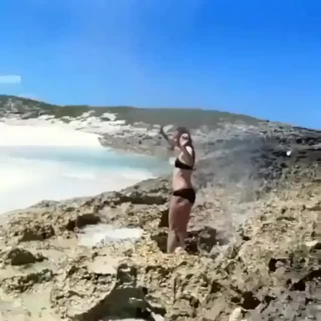 Watch and share Hold My Cosmo While I Stand In This Blow Hole GIFs on Gfycat