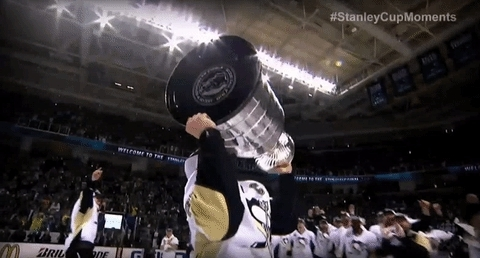 stanley cup GIFs