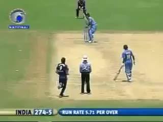Watch and share Cricketgifs GIFs and Cricket GIFs on Gfycat