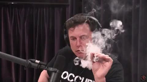 Watch Elon Musk.gif GIF by Streamlabs (@streamlabs-upload) on Gfycat. Discover more celebs, elon musk GIFs on Gfycat
