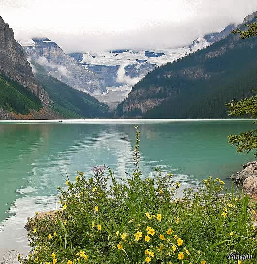 Watch Canadian Rockies GIF on Gfycat. Discover more related GIFs on Gfycat