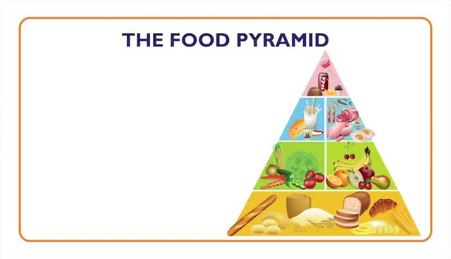 Watch and share Fish: Nutritional Value And Food Pyramid - Something Fishy: Kids Lesson 7 GIFs on Gfycat