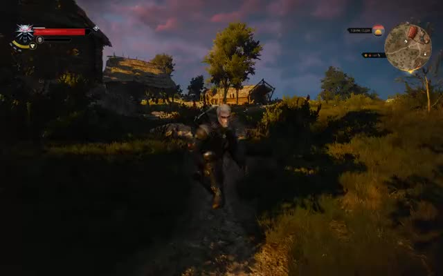 Watch and share Witcher GIFs by vroumish on Gfycat