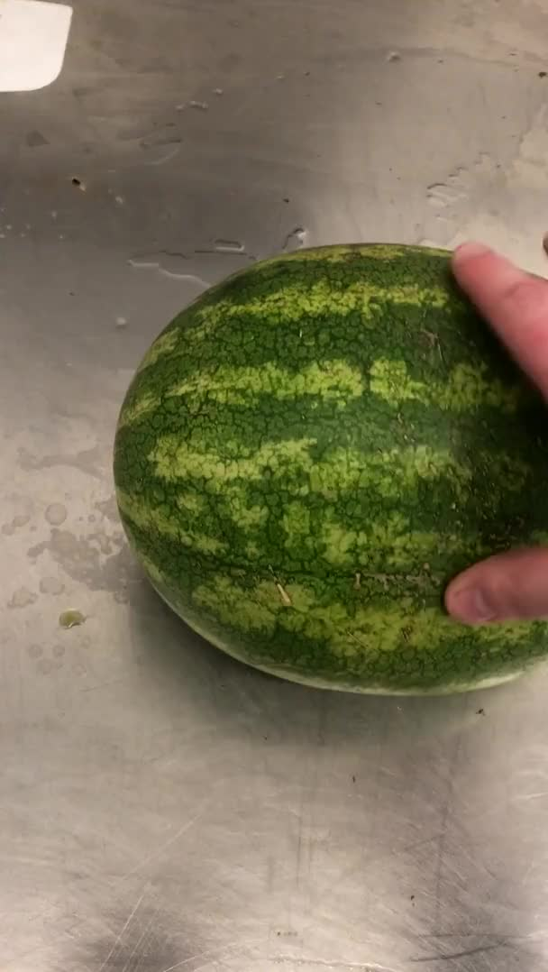 Watch and share Watermelon Chaos GIFs by chtat12 on Gfycat