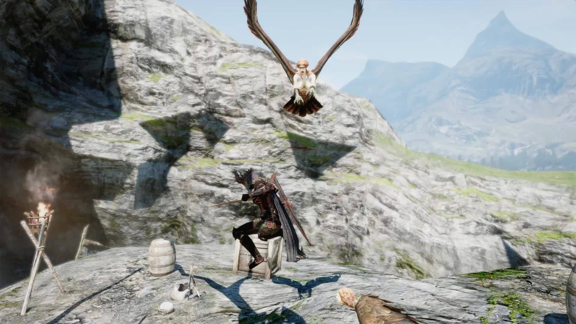 DragonsDogma, dragonsdogma, Review: Dragon's Dogma: Dark Arisen 8/10 (PS4 Pro, confirmed to be 30fps, even on Pro) (reddit) GIFs