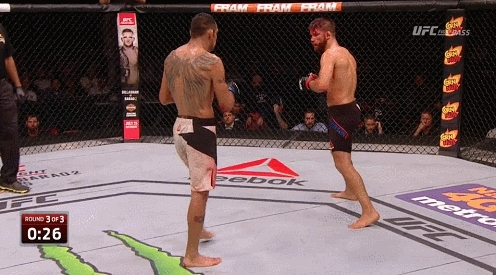 mmagifs, Beneil Dariush punch off the cage (reddit) GIFs