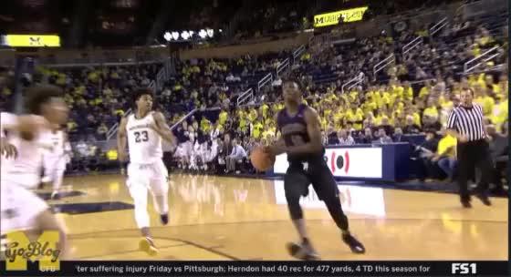 Watch JORDAN POOLE! GIF by MGoBlog (@mgoblog) on Gfycat. Discover more 2017-18, Basketball, Bench, Block, Jordan Poole, Michigan, Reaction, Three, UC Riverside GIFs on Gfycat