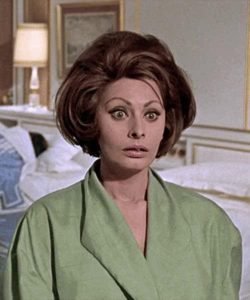 Watch sophia loren GIF on Gfycat. Discover more Sophia Loren GIFs on Gfycat