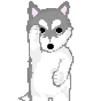 Watch and share HUSKY animated stickers on Gfycat