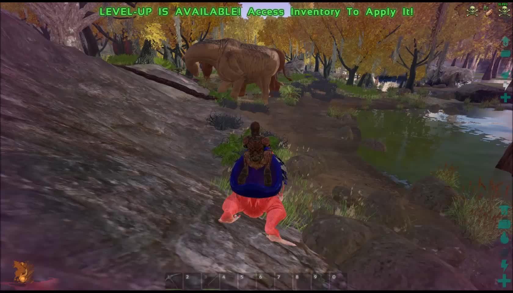 playark, I fucking love the swamp GIFs
