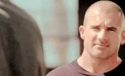 Watch prison break GIF on Gfycat. Discover more 1x01, 1x16, 2x01, 2x02, 2x07, 3x13, 4x12, four, i could cry, lincoln burrows, michael scofield, one, pbedit, prison break, prisonbreakedit, requested, tfb, this song fits them so good, three, two, ~mine GIFs on Gfycat