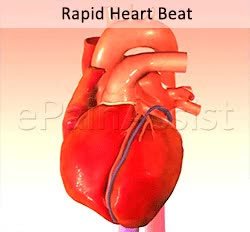 Watch and share Rapid Heart Rate GIFs and Rapid Heartbeats GIFs by ePainAssist.com on Gfycat