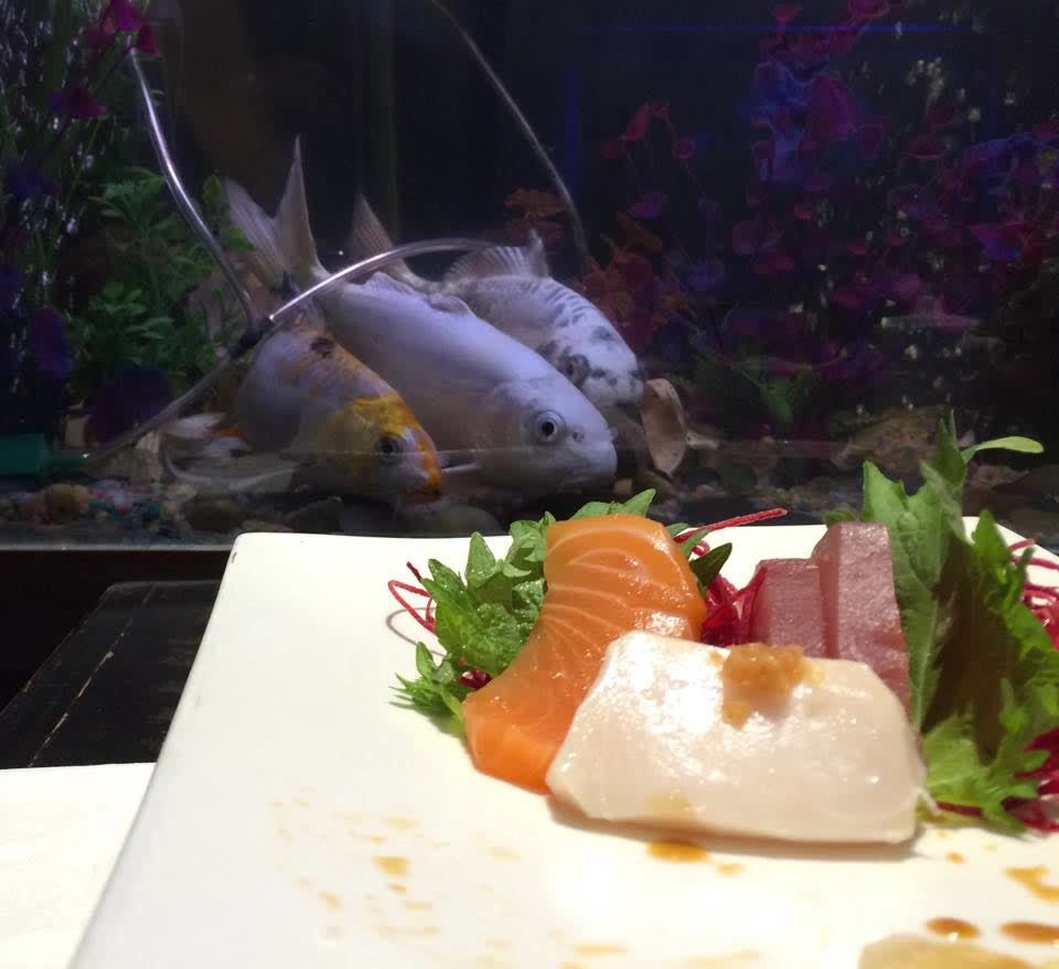 SushiAbomination, lifestyle, I picked the wrong seat at the sushi place (x-post r/lifestyle) (reddit) GIFs