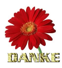 Watch and share Danke-0017.gif Von 123gif.de Download & Grußkartenversand GIFs on Gfycat