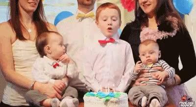 Watch and share Birthday Celebration GIFs on Gfycat