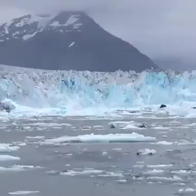 Watch Columbia Glacier at its finest today. #stanstephenscruises #columbiaglacier #... GIF on Gfycat. Discover more related GIFs on Gfycat