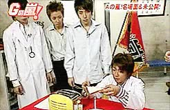 Watch Are you stupid? GIF on Gfycat. Discover more GnA, LMAO, aiba, aimiya, he sure can't tolerate Aiba being baka XD, nino, orework GIFs on Gfycat