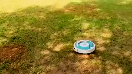 Watch and share Zoomies GIFs by DevAnima on Gfycat