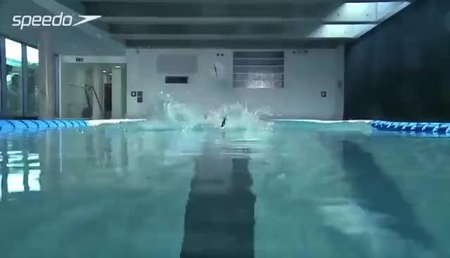 Watch Backstroke 1 GIF on Gfycat. Discover more swimming GIFs on Gfycat