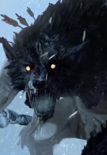 wolf webm GIFs