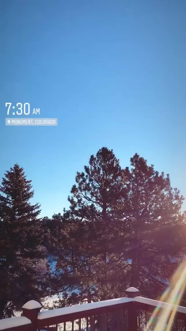 Watch and share Laramcwhorter 2018-11-25 22:32:58.846 GIFs by Pams Fruit Jam on Gfycat