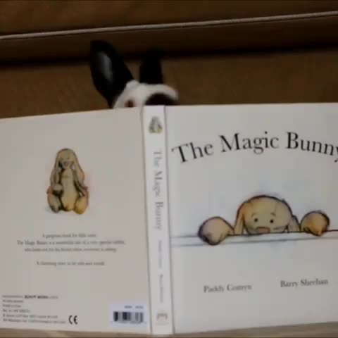Watch and share Bibliophile GIFs and Bookbinding GIFs on Gfycat