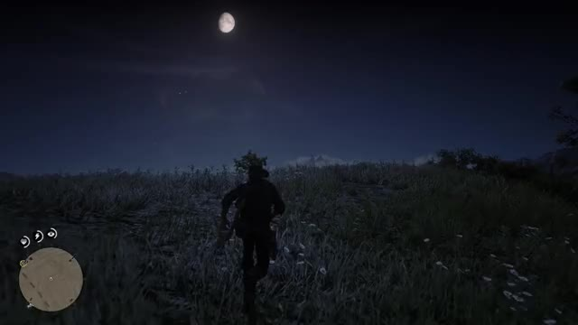 Watch TheKampinghorse RedDeadRedemption2 20181028 03-32-09 GIF on Gfycat. Discover more related GIFs on Gfycat