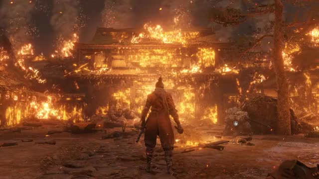 Watch and share SEKIRO SHADOWS DIE TWICE GIFs by Thahseen Ali on Gfycat