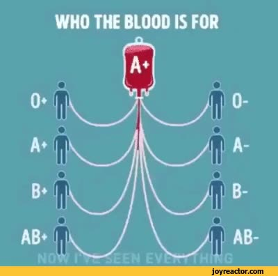 Watch and share Blood-donation-types-gif-4109926[1] GIFs by Acrivec on Gfycat