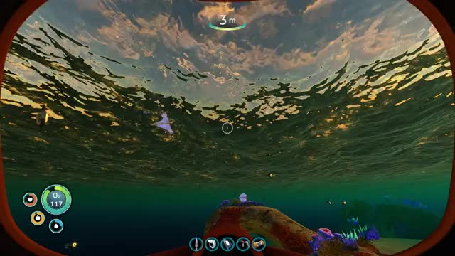 Watch Bladderfish Subnautica GIF on Gfycat. Discover more Bladderfish, subnautica GIFs on Gfycat