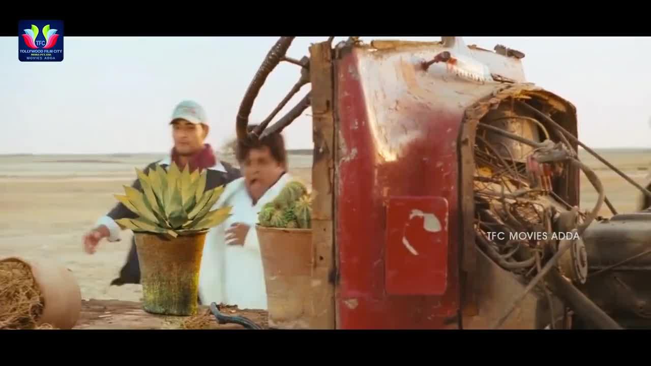 Ali And Anushka Shetty Comedy Scene    Latest Telugu Movie Scenes    TFC Movies Adda GIFs