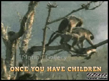 Гифка обезьяна с гранатой