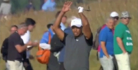 tiger woods,  GIFs