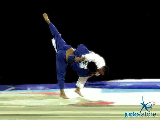 Watch Judo GIF on Gfycat. Discover more related GIFs on Gfycat