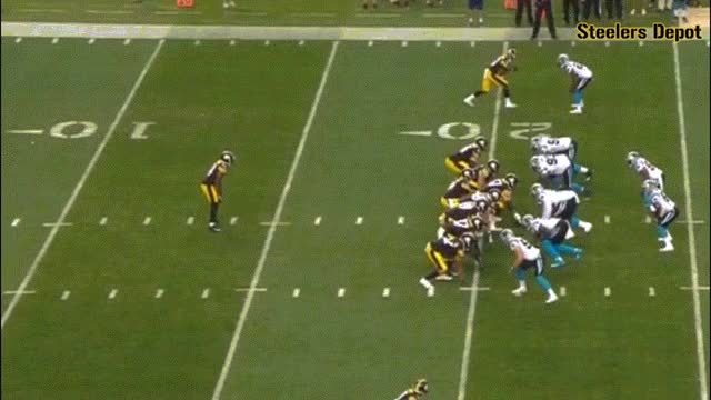 Watch banner-panthers-1 GIF on Gfycat. Discover more related GIFs on Gfycat