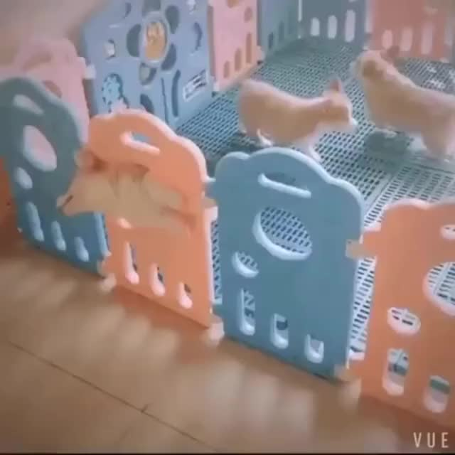 Watch this corgi GIF by killgif.com (@wgifwgif) on Gfycat. Discover more corgi, corgis, dog, puppies, puppy GIFs on Gfycat