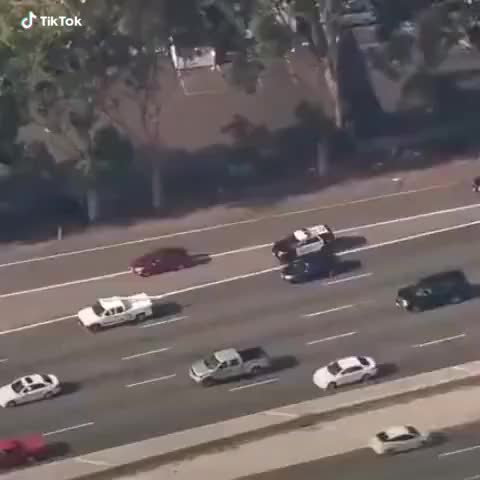 Good job, policeman GIFs