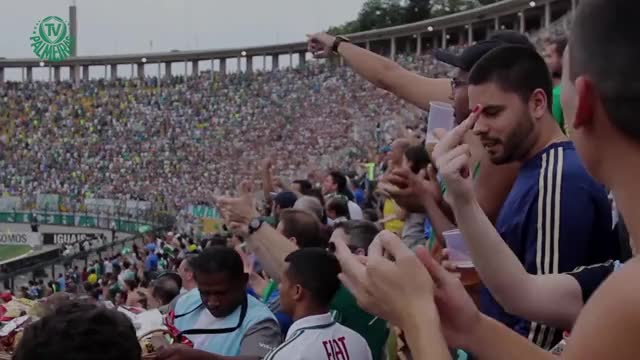 Watch and share Canal Do Palmeiras GIFs and Palmeiras 100 Anos GIFs on Gfycat