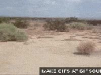 Watch and share Noanswer Alone, Desert, Bola De Paja, Not Amused GIFs on Gfycat