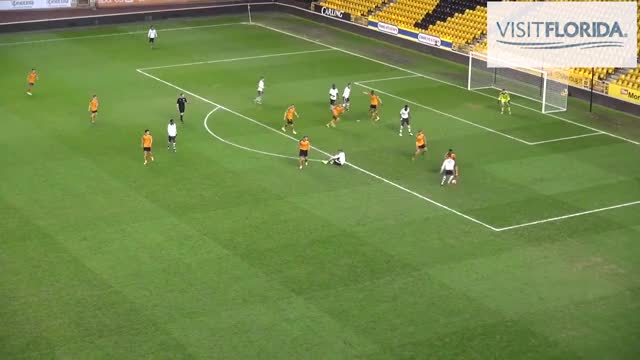 Watch and share Skybet Championship GIFs and Fulham Fc GIFs on Gfycat
